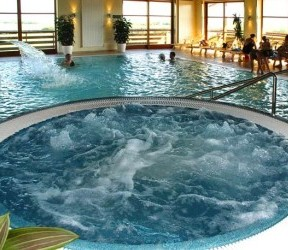 Home indoor pool and hot tub  The control of legionella and other infectious agents in spa-pool ...